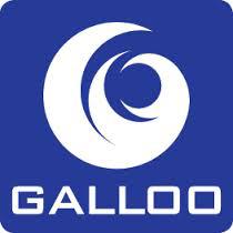 GALLOO